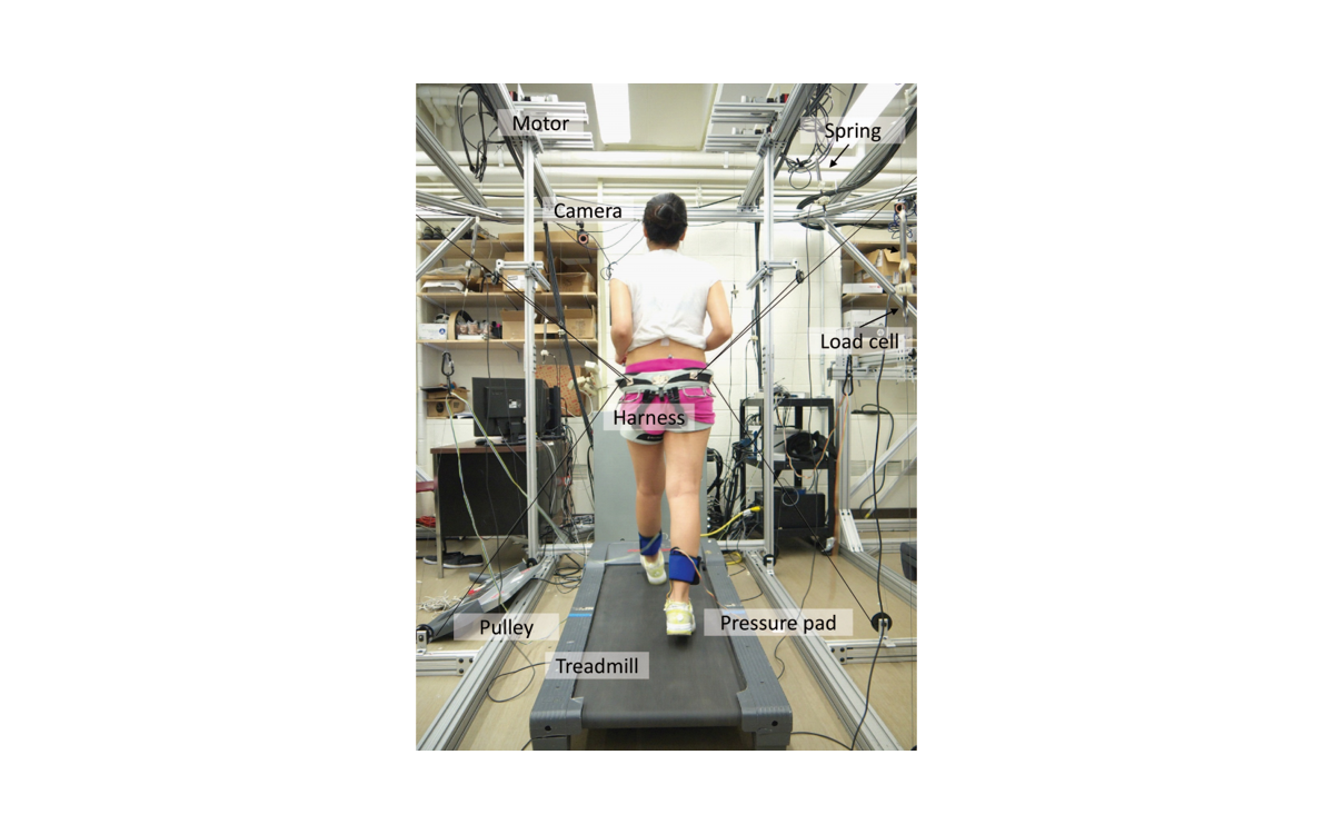 A subject walking on a treadmill while wearing the Tethered Pelvic Assist Device (TPAD)