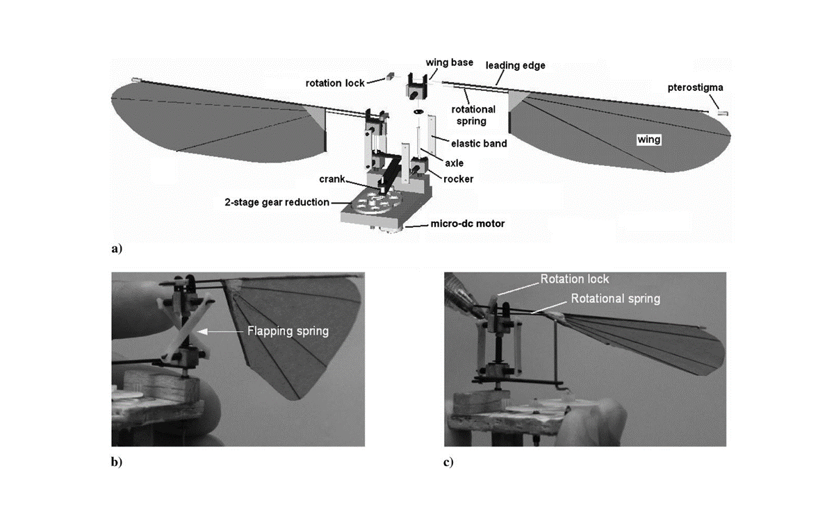 Details of design of a flapping robot