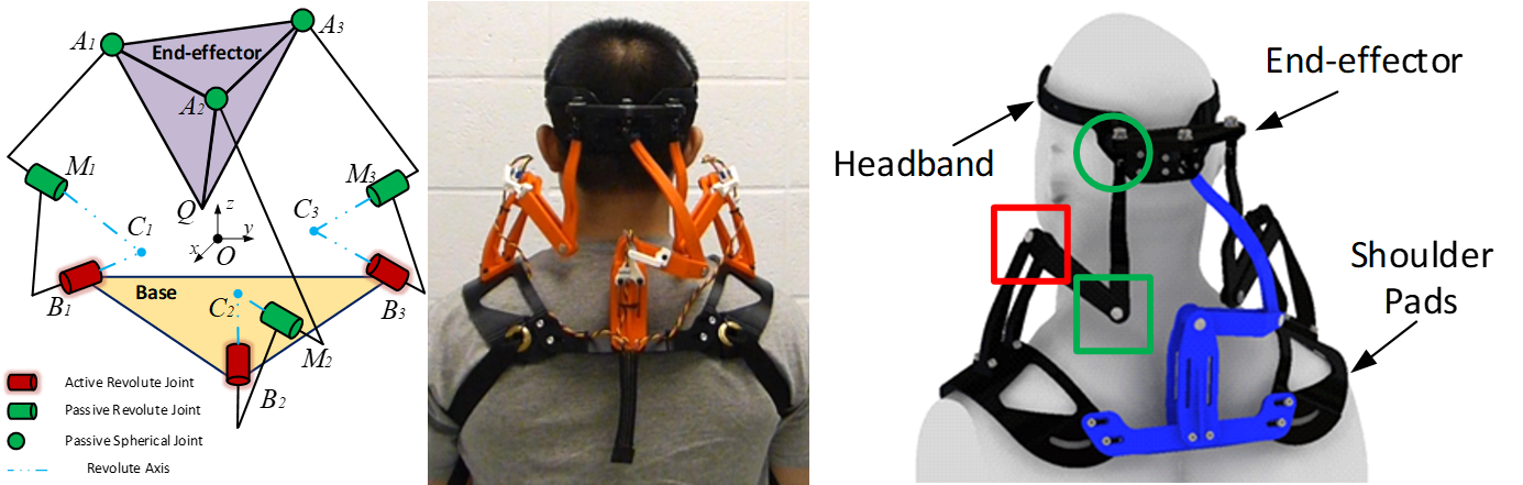 Left: Schematic of the neck brace (3 R-R-S chains connected in parallel). Middle: Rear view of a subject wearing the neck brace.  Right: CAD model of the neck brace on a mannequin